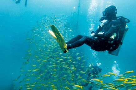 Scuba Diving Pondicherry